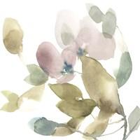 Sweet Petals and Leaves I Framed Print