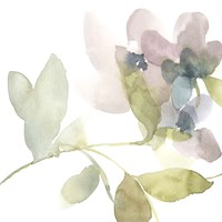 Sweet Petals and Leaves II Framed Print