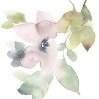 Sweet Petals and Leaves IV Framed Print
