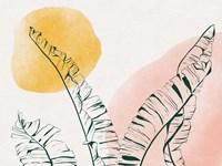 Summer Warmth II Fine Art Print