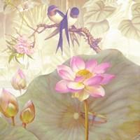 Lotus Sanctuary IV Framed Print
