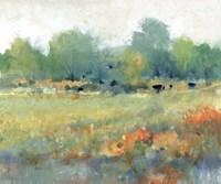 Rural Land II Framed Print