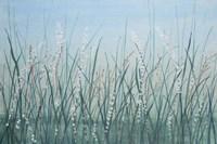 Tall Grass II Framed Print