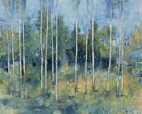 Woodland View I Framed Print