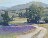 Lavender Meadow I Framed Print