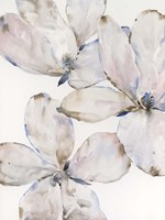Soft Wind Flowers I Framed Print