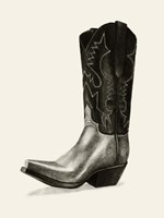 Shiny Boots II Framed Print