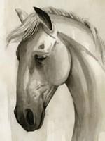 Freckled Pony I Framed Print