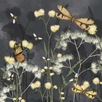 Garden Magic I Framed Print