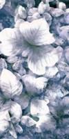 Blue Shaded Leaves V Framed Print