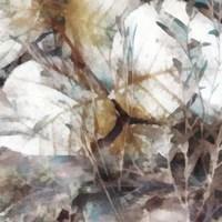 Neutral Summer Leaves II Framed Print