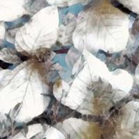 Neutral Summer Leaves III Framed Print
