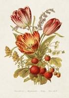 Antique Floral Bouquet IV Framed Print