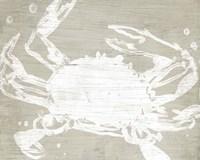 Weathered Crab II Framed Print