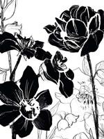 Monotype Garden I Framed Print