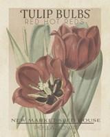 Vintage Seed Packets VI Fine Art Print
