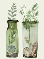 Ocean in a Bottle V Framed Print