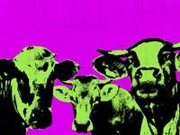 Pop Art Farm VI Framed Print