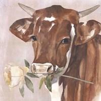 Peony Cow I Framed Print