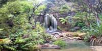 Rainforest waterfall Fine Art Print