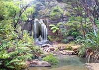 Rainforest waterfall (detail) Fine Art Print