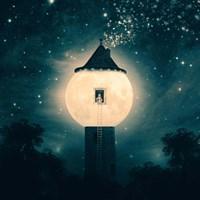 The Moon Tower Fine Art Print