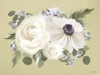 Anemone in Sage II Framed Print