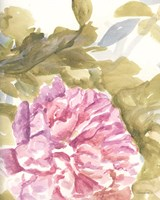 Warm Violet 2 Framed Print