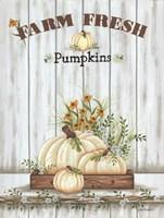 Farm Fresh Pumpkin Fine Art Print