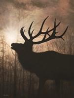 Elk Sunrise II Framed Print