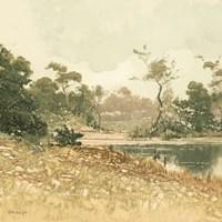 Country Pond 6 Framed Print