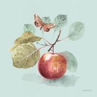 Autumn in Nature 02 on Aqua Framed Print