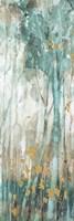 Forest Dream 05 Framed Print