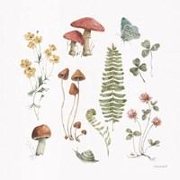 Forest Treasures 03 Framed Print