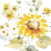Sunflowers Forever 05 Framed Print