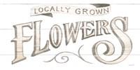 Homegrown Summer Sign IV Framed Print