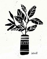 Botanical Sketches VI Framed Print