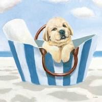 Beach Ride VI Framed Print