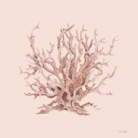 Pink Coral I Framed Print
