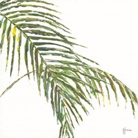 Two Palm Fronds II Framed Print