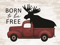 Born to be Free Moose Framed Print