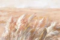 Terracotta Prairie Grasses Framed Print