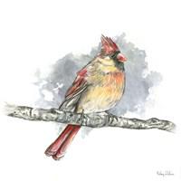 Birds & Branches II-Female Cardinal Framed Print