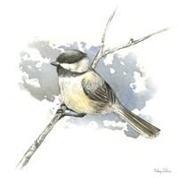 Birds & Branches III-Chickadee Framed Print