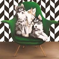 Hipster, Sister and Mister Framed Print