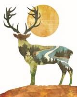 Forest Deer Framed Print