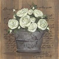Heavenly Roses Framed Print