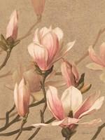 Antique Botanical Collection 4 Framed Print