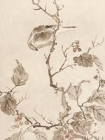 Sumi Ink Study 1 Framed Print
