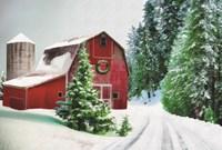 Winter Pines Red Barn Fine Art Print